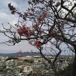 【名護観光・3】名護城址